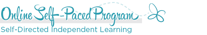 Online Self-Paced Program - Self-Difected Independent Learning